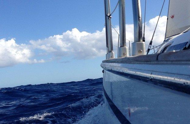 sailboat-surveys
